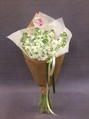 Магазин цветов VGosti.by Монобукет «Маттиола»