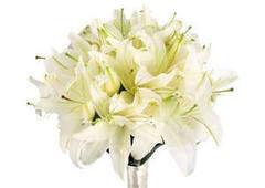 Магазин цветов Долина цветов Свадебный букет №5