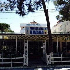 Туристическое агентство VIP TOURS Пляжный авиатур в Албанию, Дуррес, Ujvara 2*+ (завтраки)