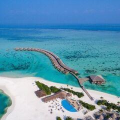 Туристическое агентство EcoTravel Пляжный авиатур на Мальдивы, Cocoon Maldives 5