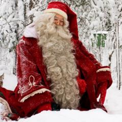 Туристическое агентство Мастер ВГ тур Новогодний тур «В гости к Санта-Клаусу»