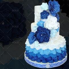 Торт Sole Праздничный торт №5