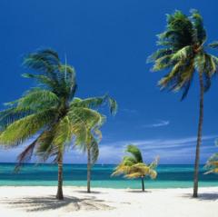 Туристическое агентство Слетать.ру Минск Пляжный авиатур на Кубу, Gran Caribe Puntarena & Playa Caleta Complex 4*