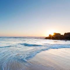 Горящий тур Голд Фокс Трэвел Пляжный aвиатур в Египет, Шарм-эль-Шейх, Dreams Vacation Resort