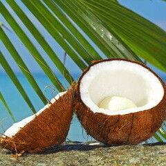 Магазин подарочных сертификатов Марсель Подарочный сертификат на СПА-день «Баунти – кокосовое наслаждение»