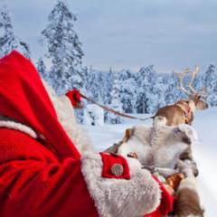 Туристическое агентство ДЛ-Навигатор Новогоднее путешествие в Лапландию к Санта Клаусу