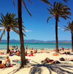 Туристическое агентство Мастер ВГ тур Пляжный авиатур в Испанию, Майорка, Occidental Cala Vinas 4*