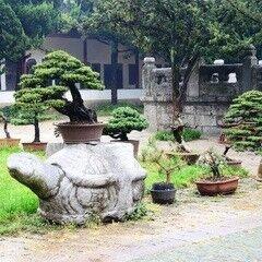 Туристическое агентство Jimmi Travel Отдых в Китае, Sunny Sanya Family Inn 3*