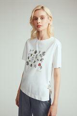 Кофта, блузка, футболка женская Elis Блузка женская арт. BL1554K