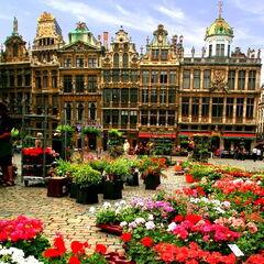Туристическое агентство Боншанс Экскурсионный автобусный гранд-тур по Бельгии и Нидерландам