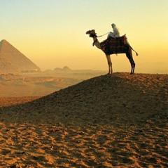 Горящий тур Голд Фокс Трэвел Пляжный авиатур в Египет, Шарм-Эль-Шейх, Delta Sharm Resort 4*