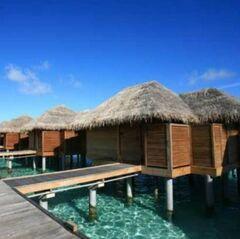 Туристическое агентство EcoTravel Пляжный авиатур на Мальдивы, Баа и Раа атоллы, Sun Island Resort 5*