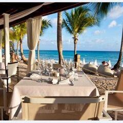 Туристическое агентство EcoTravel Пляжный авиатур в Доминикану, Catalonia Grand Dominicus 4