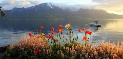 Туристическое агентство Инминтур Экскурсионный тур в Германию и Швейцарию