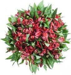 Магазин цветов Florita (Флорита) Букет из красных альстромерий