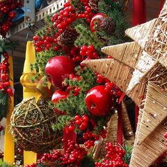 Туристическое агентство Боншанс Автобусный тур «Рождественские мотивы в Праге» (без ночных переездов)