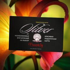 Магазин подарочных сертификатов Spa Paradise Подарочная карта «Silver»