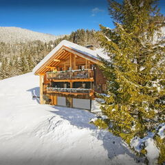 Туристическое агентство Madera Travel Автобусный тур «Новый год в Альпах» (без ночных переездов)