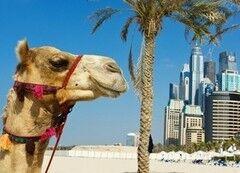 Туристическое агентство Мастер ВГ тур Отдых в ОАЭ, вылет из Москвы на 7 и более ночей