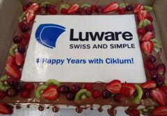 Торт DOLCE Корпоративный торт «Luware»