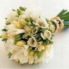 Магазин цветов Фурор Букет из фрезий