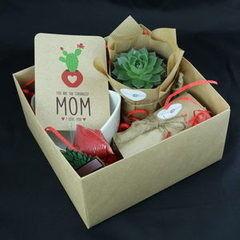 Магазин цветов Stone Rose Набор для посадки суккулента ко Дню Матери