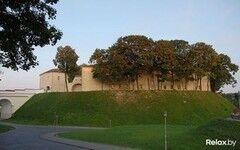 Достопримечательность Старый Замок Фото