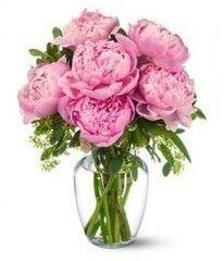 Магазин цветов Фурор Пион