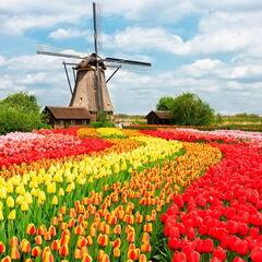 Туристическое агентство Внешинтурист Экскурсионный автобусный тур N4 «Уикенд в Нидерландах»