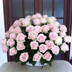 Магазин цветов VGosti.by Цветочная композиция «Чистая любовь»