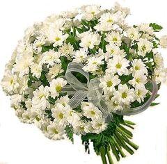 Магазин цветов Фурор Букет «Ромашка»