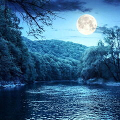 Туристическое агентство Элдиви Экскурсионный автобусный тур «Неземная красота озер»