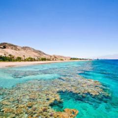 Туристическое агентство Голд Фокс Трэвел Пляжный aвиатур в Турцию, Аланья, Grand Sunlife 4*
