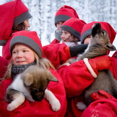 Туристическое агентство Боншанс Рождественский тур «Зимняя сказка в Лапландии»