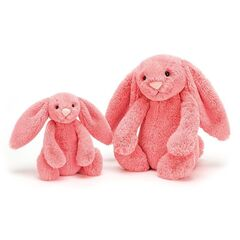 Подарок Jelly Cat Игрушка мягкая «Кролик Coral»