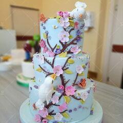Торт Sole Праздничный торт №24