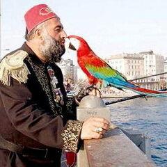 Туристическое агентство География Пляжный авиатур в Турцию, Кушадасы, Batihan Beach Resort & Spa 4*