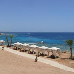 Горящий тур Мастер ВГ тур Пляжный aвиатур в Египет, Шарм-Эль-Шейх, Royal Albatros Moderna 5*