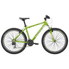 """Велосипед Focus Велосипед  Raven Rookie 1.0 26"""""""