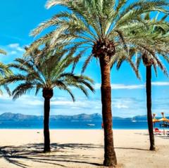 Туристическое агентство Мастер ВГ тур Пляжный авиатур в Испанию, Майорка, H10 Casa del Mar 4*