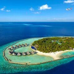 Туристическое агентство TravelHouse Пляжный aвиатур на Мальдивы, Лавияни Атолл, Palm Beach Resort & Spa 4*