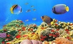 Туристическое агентство Мастер ВГ тур Египет из Минска, Хургада, отель Coral Beach Resort HRG 4*