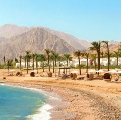 Горящий тур Мастер ВГ тур Пляжный aвиатур в Египет, Шарм-Эль-Шейх, Gafy Resort 4*