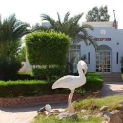 Туристическое агентство Санни Дэйс Пляжный авиатур в Египет, Шарм-Эль-Шейх, The Regnum Hotel 4*