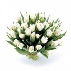 Магазин цветов Планета цветов Букет из тюльпанов №5
