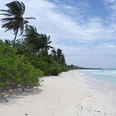 Туристическое агентство Яканата тур Пляжный авиатур на Мальдивы, Лааму Атолл, Nazaki Residence Guest Houses