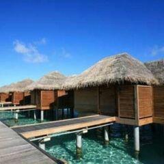 Туристическое агентство EcoTravel Пляжный авиатур на Мальдивы, Sun Island Resort 5