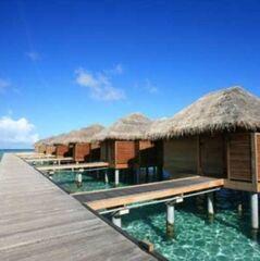 Туристическое агентство EcoTravel Пляжный aвиатур на Мальдивы, Sun Island Resort 5*