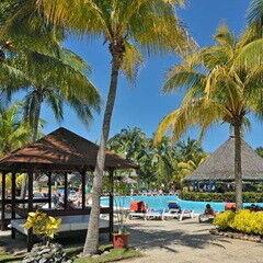 Туристическое агентство Jimmi Travel Отдых на Кубе, Sol Palmeras 4*