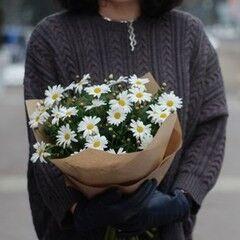 Магазин цветов VETKA-KVETKA Монобукет с маргаритками 208